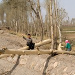 A boy helping his mother take the bark off trees. Or perhaps he is not helping that much after all?